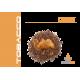 Desert - 10ml - elektromos cigi